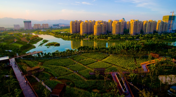 Luming Park and China's Green Revolution
