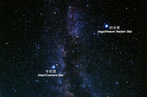 Qixi Stars